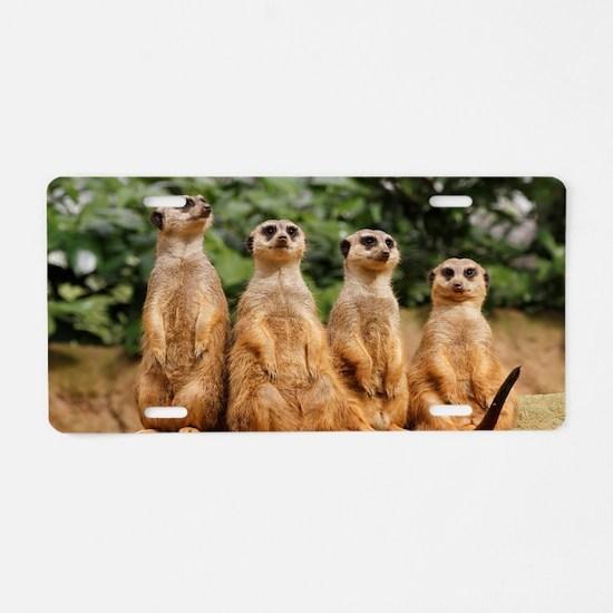 Meerkat-Quartett 001 Aluminum License Plate