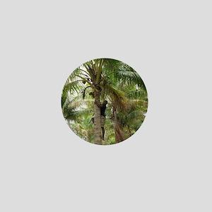 Fijian climbing a coconut palm Mini Button
