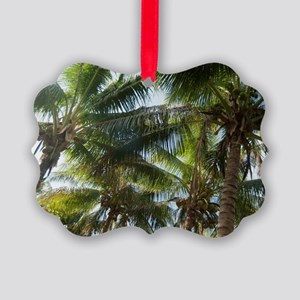 Coconuts and coconut palms Picture Ornament
