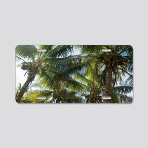 Coconuts and coconut palms Aluminum License Plate