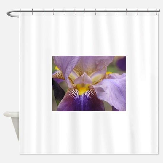 IMG_0545.JPG Shower Curtain