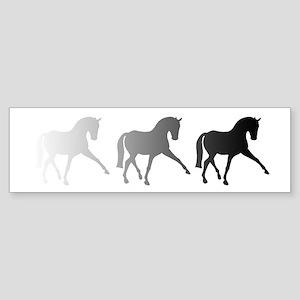 Dressage Horse Sidepass Ombre Sticker (Bumper)