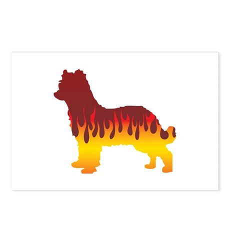 Pyrenean Flames Postcards (Package of 8)