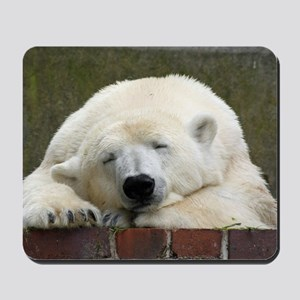 Polar bear 003 Mousepad