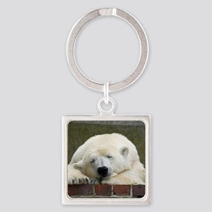 Polar bear 003 Square Keychain