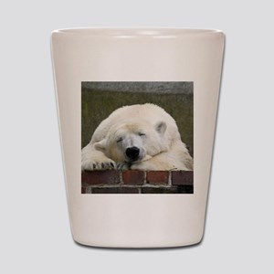 Polar bear 003 Shot Glass