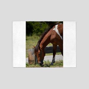 Wild Pony Snack Time 5'x7'Area Rug