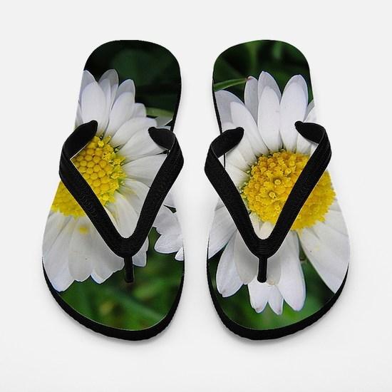 007 Flip Flops