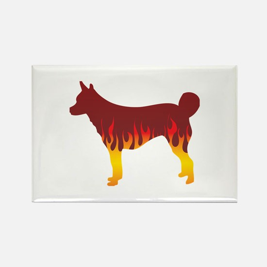 Lundehund Flames Rectangle Magnet