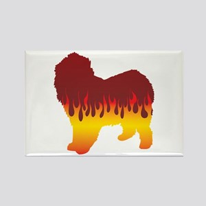 Lagotto Flames Rectangle Magnet