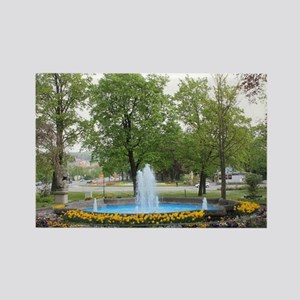 Fountain in Amberg Rectangle Magnet