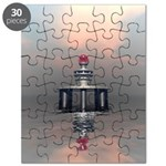Mysterious Metallic Structure Puzzle