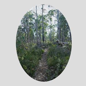 woodland footpath Oval Ornament
