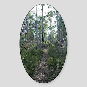 woodland footpath Sticker (Oval)