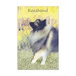 Keeshond in Aspen Mini Poster Print
