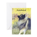 Keeshond in Aspen Greeting Cards (Pk of 10)