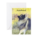 Keeshond in Aspen Greeting Cards (Pk of 20)