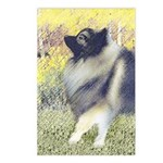 Keeshond in Aspen Postcards (Package of 8)