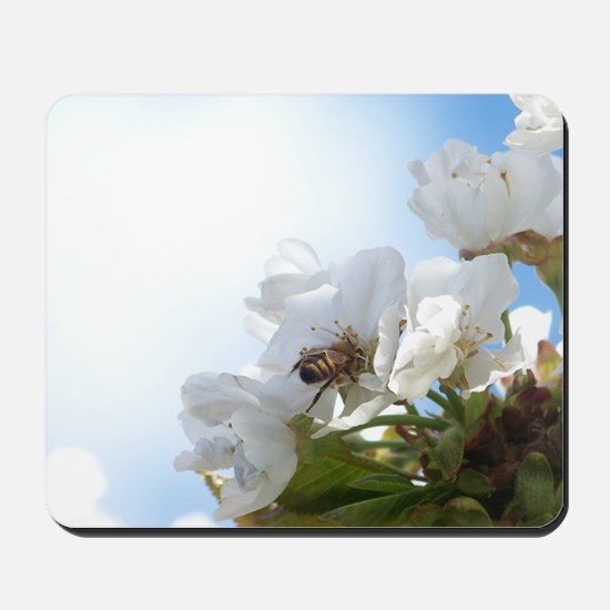Honey Bee on Cherry Blossoms Mousepad