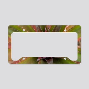 pink pineapple License Plate Holder