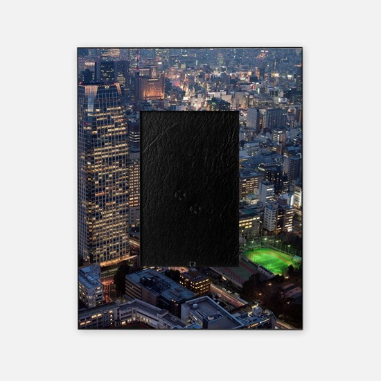 250 observation view Picture Frame