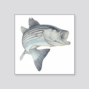 striper_Or Sticker