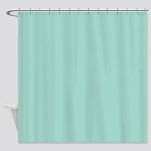Mint A1D6CA 30x30 Shower Curtain