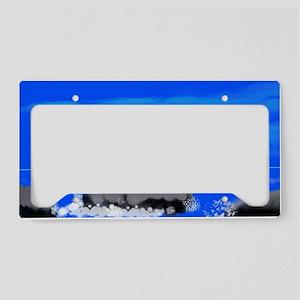 bonzai License Plate Holder