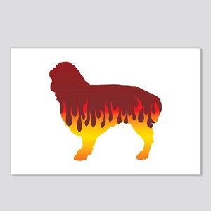Spaniel Flames Postcards (Package of 8)