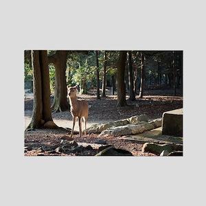 Wild Deer Rectangle Magnet