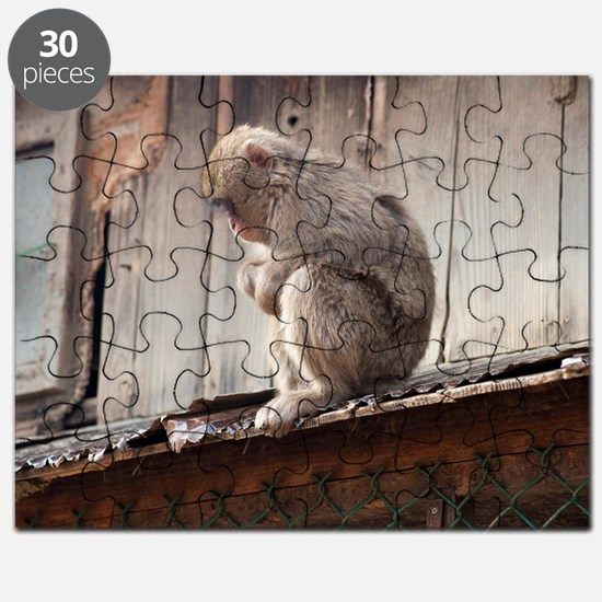 monkey on the roof Puzzle