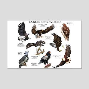 Eagles of the World Mini Poster Print