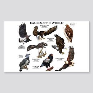 Eagles of the World Sticker (Rectangle)