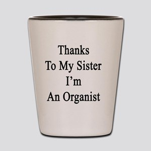 Thanks To My Sister I'm An Organist  Shot Glass