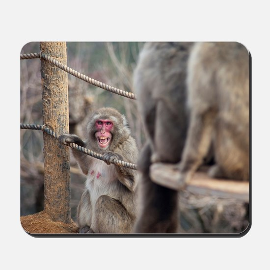 angry monkey Mousepad