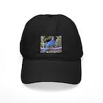 Steller's Jay on Branch Black Cap