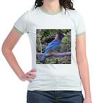 Steller's Jay on Branch Jr. Ringer T-Shirt