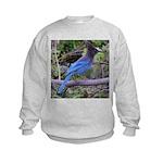 Steller's Jay on Branch Kids Sweatshirt