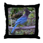 Steller's Jay on Branch Throw Pillow
