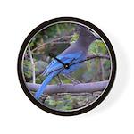 Steller's Jay on Branch Wall Clock