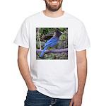 Steller's Jay on Branch White T-Shirt