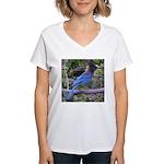 Steller's Jay on Branch Women's V-Neck T-Shirt