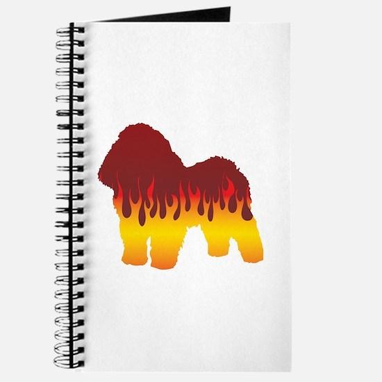 Bolognese Flames Journal