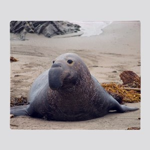 elephant seal on a beach Throw Blanket