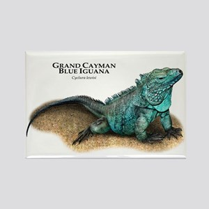 Grand Cayman Blue Iguana Rectangle Magnet