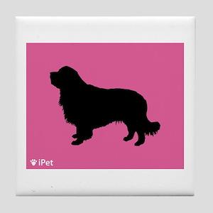Clumber iPet Tile Coaster
