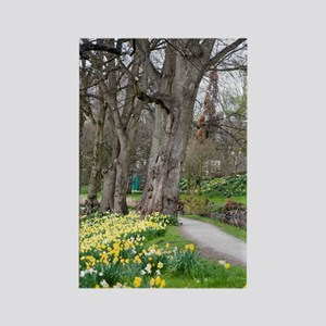 Daffodils in Bute Park Rectangle Magnet