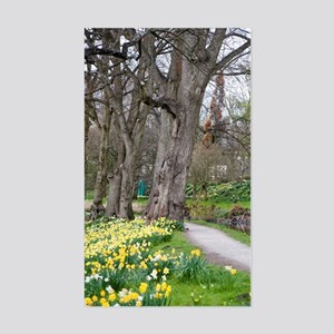 Daffodils in Bute Park Sticker (Rectangle)