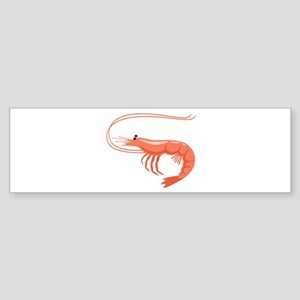 Prawn Shrimp Bumper Sticker