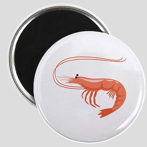 Prawn Shrimp Magnets